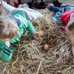 Kinder holen eier